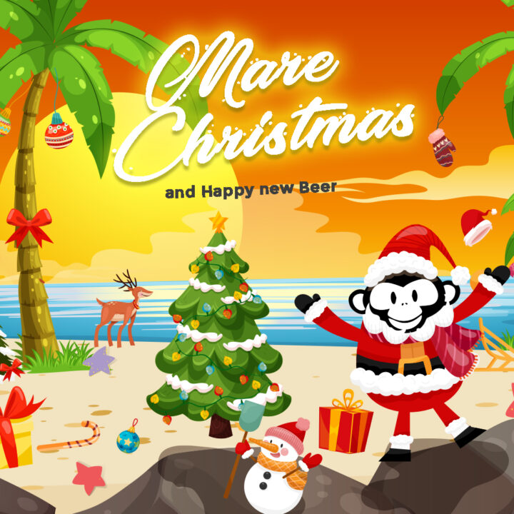 Mare Christmas – il Natale d'Estate